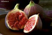خواص میوه انجیر