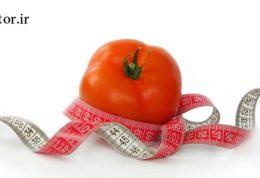 ثابت نگه داشتن وزن بدن با رژیم غذایی (تثبیت وزن)