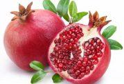خواص دارویی پوست، ریشه، ساقه و میوه درخت انار