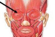 توصیه دکتر میرزایی :زخمهای سر و گردن را جدی بگیرید