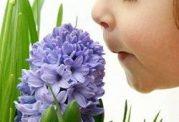 کاهش حس بویایی را ساده نگیرید