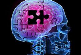 تازهترین پژوهشهای دانشمندان درباره پیشگیری از آلزایمر