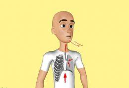 آموزش تصویری تمرینات ورزشی برای افزایش ظرفیت ریه قسمت 1