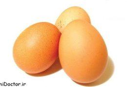 توصیه متخصصان علم تغذيه درباره تخم مرغ