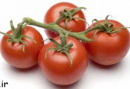 ارزش سلامتی رب گوجه فرنگی با گوجه فرنگی کنسروی
