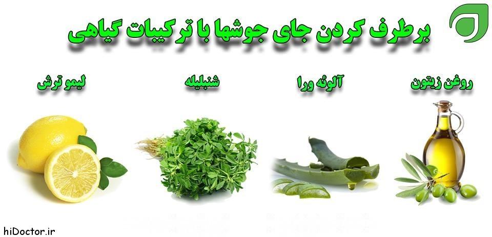 درمان جای جوش با گیاهان دارویی