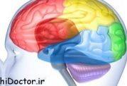 تاثیر کاهش ویتامین ب12 در مغز