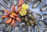 سلامتی بیشتر با  غذاهای دریایی