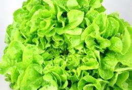 وسط سبزیهای برگ دار را نخورید