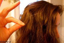 شیوه هایی موثر برای پیشگیری از زود سفید شدن موها