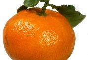 خواصی چند از نارنگی