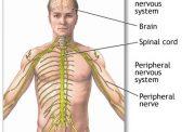 بیماری آتاکسی چیست و آیا امروزه درمانی برای این بیماری وجود دارد؟