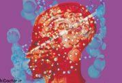 آیا اختلال وسواس به مفهوم اختلال در مغز است؟