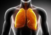 کاهش ریسک سرطان ریه با سبزیجات