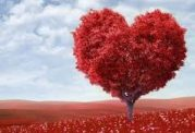 آیا هورمون عشق و وفاداری وجود دارد؟