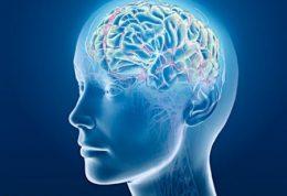 دلیل یخ زدن مغز هنگام خوردن آب سرد