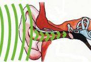 با مکانیسم شنوایی ، تعادل و حرکت  آشنا شوید