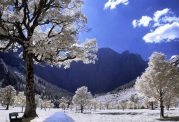 حفظ سلامت در زمستان