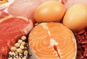 هرآنچه درمورد پروتئین ها باید بدانید