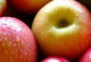 با سیب کم حوصلگی را درمان کنید؟