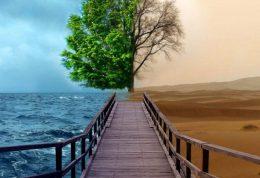 چگونه زندگی خود را کیفیت ببخشیم