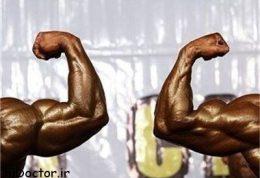 آسان عضله بسازید