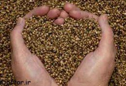 مصرف روزانه کدام دانه ها توصیه می شود