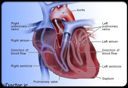 نارسایی قلبی به چه علتی بوجود می آید