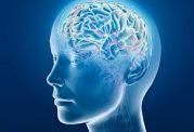 حقایقی درباره تومور مغزی بزرگسالان