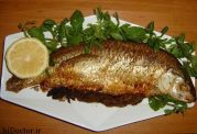 بهترین ماهی از لحاظ میزان امگا 3