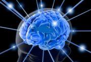 با چند روش ساده به جنگ ضعف حافظه بروید