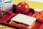 در روزهای اول مدرسه چه چیزی بخوریم