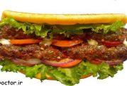 آیا ساندویچ هم برای بدن فایده دارد؟