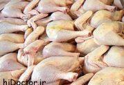 هرآنچه باید درمورد مرغ سبز بدانید