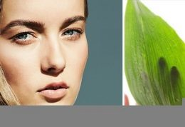 10مارک ارگانیک لوازم زیبایی که میتوانید به آن اطمینان کنید!