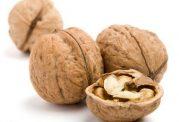 این مواد غذایی سوخت و ساز بدن شما را زیاد میکنند