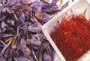 دانستنی هایی درمورد ارزش غذایی زعفران