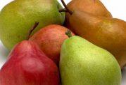 عکس های زیبا از میوه گلابی