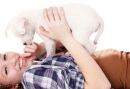 چه سگ هایی برای کودکان مناسب هستند؟