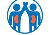 مراحل اهدا کلیه | پيوند کليه از اهدا کنندگان زنده