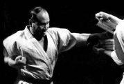 اطلاعاتی مختصر و کامل درمورد تاریخچه رشته کیوکشین کاراته