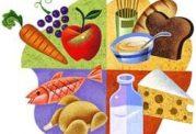 همه چیز امنیت غذایی در جامعه