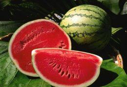 هرآنچه درمورد خاصیت های خوردن هندوانه باید بدانید