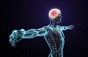 برای افزایش رشد عصب بدنبال جراحت روش جدیدی کشف شد