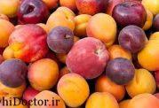 دو میوهای كه میتوانند مهاجمترین نوع سرطان را هم  نابود کنند