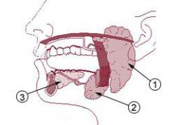 تومور های غدد بزاقی چطوری جراحی می شوند؟