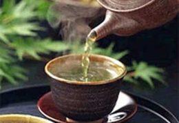 برنامه استفاده از چای سبز برای کم کردن وزن
