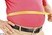 پروتئینی که قادر است  ابزار کلیدی در مقابله با اضافه وزن باشد