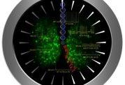 چطورمکانیزم ساعت بیولوژیک را بهتر درک کنیم