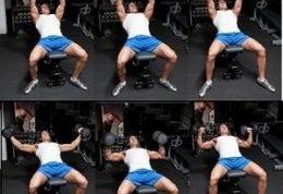 ورزش پرس بالا سینه دمبل را چطوری انجام میدهند
